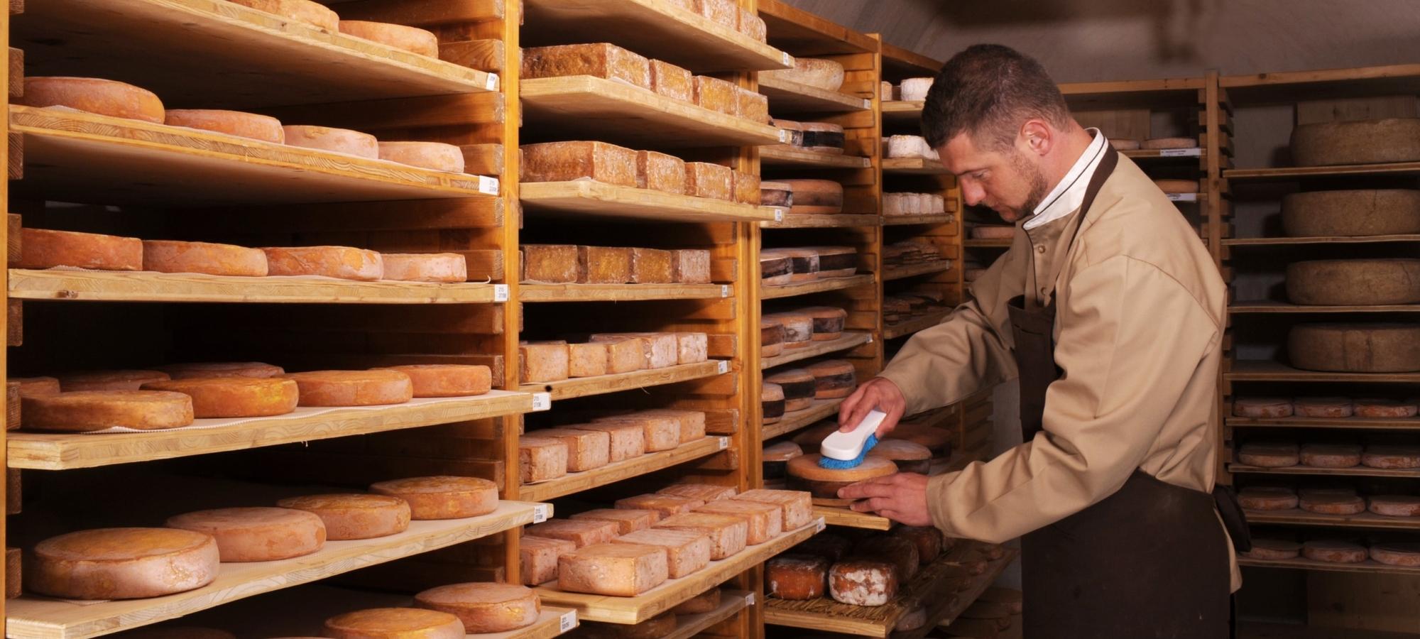 Antony – éleveur de fromages